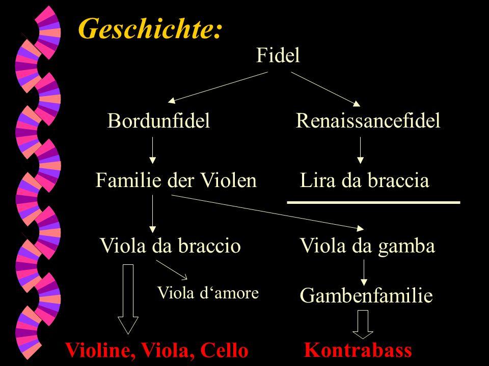 Geschichte: Bordunfidel Renaissancefidel Fidel Lira da bracciaFamilie der Violen Viola da braccio Viola da gamba Gambenfamilie Kontrabass Violine, Vio