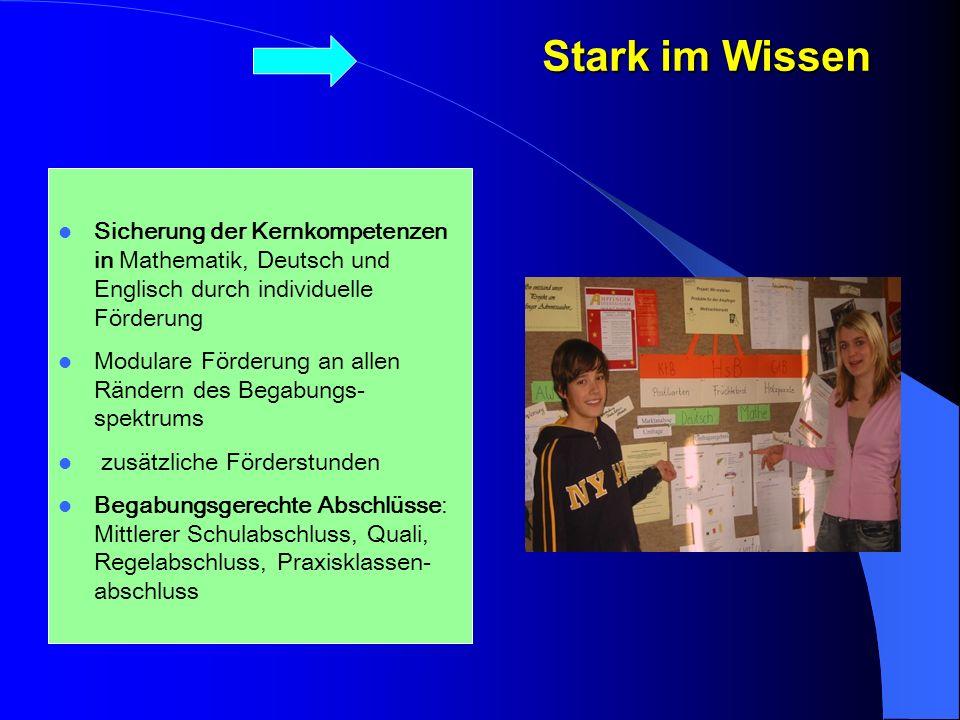 Stark im Wissen Lehrkräfte der BS und HS referieren in der lokalen Lehrerfortbildung Sicherung der Kernkompetenzen in Mathematik, Deutsch und Englisch