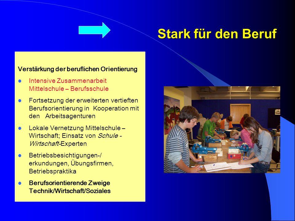 Lehrkräfte der BS und HS referieren in der lokalen Lehrerfortbildung Stark für den Beruf Verstärkung der beruflichen Orientierung Intensive Zusammenar