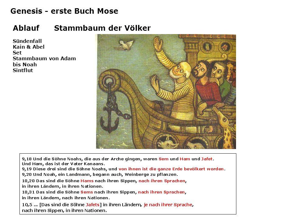 Ablauf Stammbaum der Völker Genesis - erste Buch Mose Sündenfall Kain & Abel Set Stammbaum von Adam bis Noah Sintflut