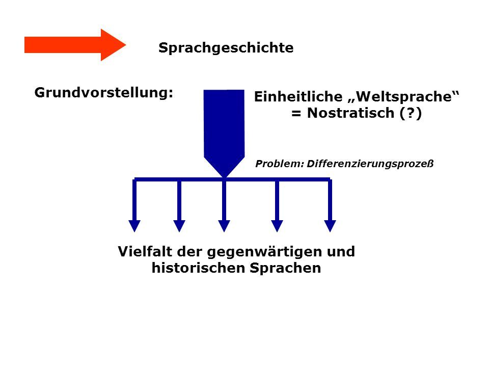 Sprachgeschichte Grundvorstellung: Einheitliche Weltsprache = Nostratisch (?) Vielfalt der gegenwärtigen und historischen Sprachen Problem: Differenzi