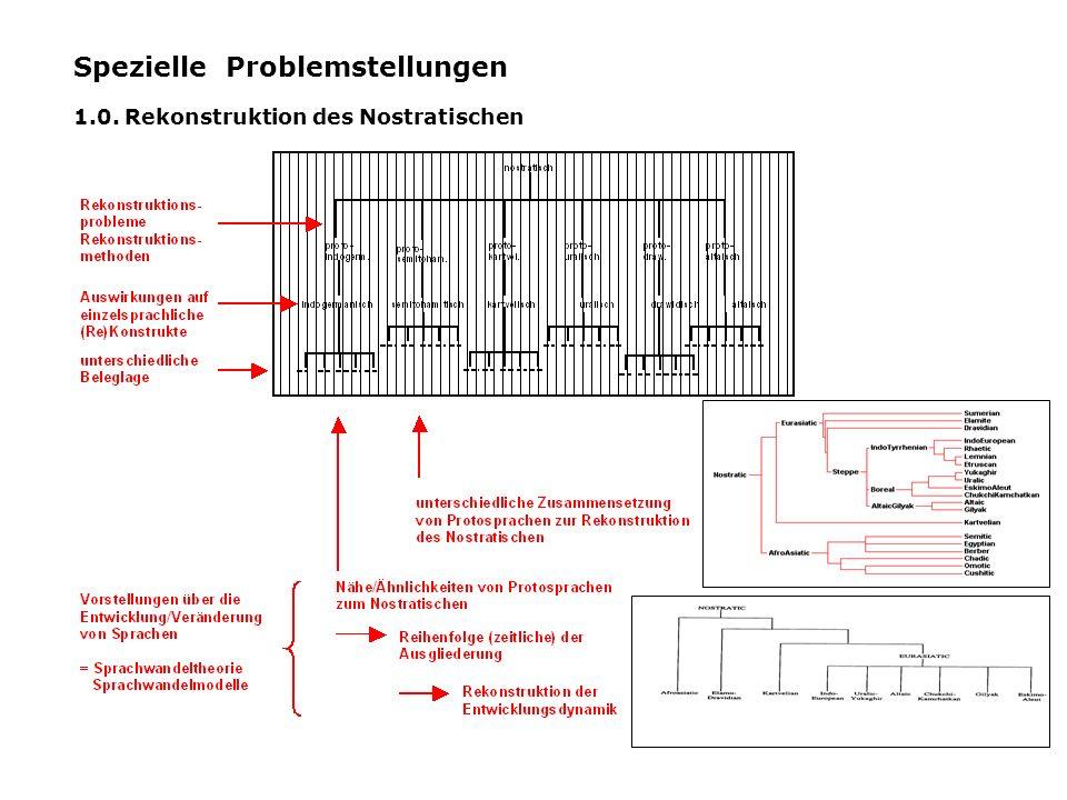 Spezielle Problemstellungen 1.0. Rekonstruktion des Nostratischen