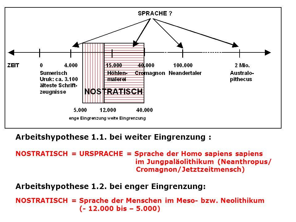 Arbeitshypothese 1.1. bei weiter Eingrenzung : NOSTRATISCH = URSPRACHE = Sprache der Homo sapiens sapiens im Jungpaläolithikum (Neanthropus/ Cromagnon