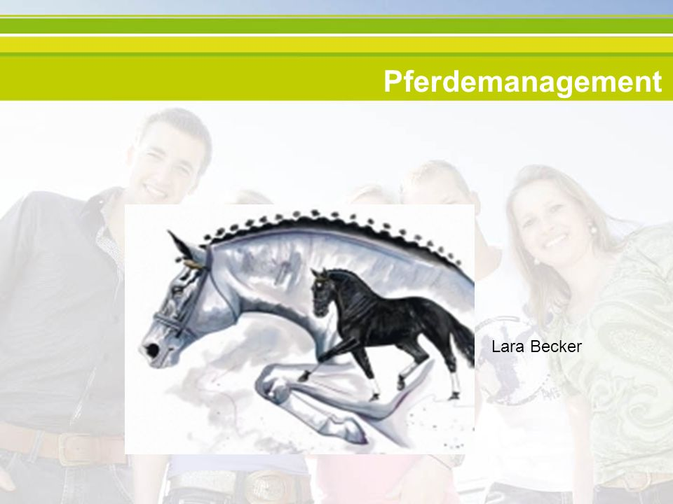 Pferdemanagement Lara Becker