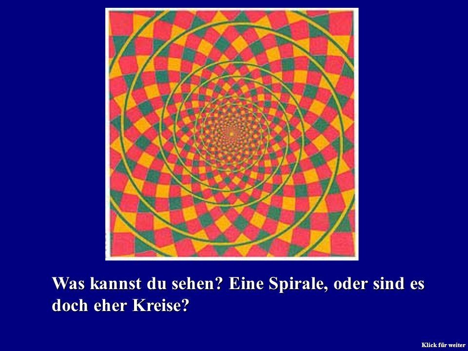Was kannst du sehen? Eine Spirale, oder sind es doch eher Kreise? Klick für weiter