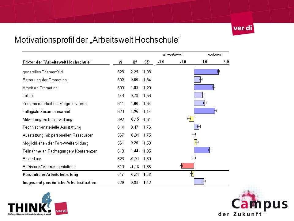 Motivationsprofil der Arbeitswelt Hochschule