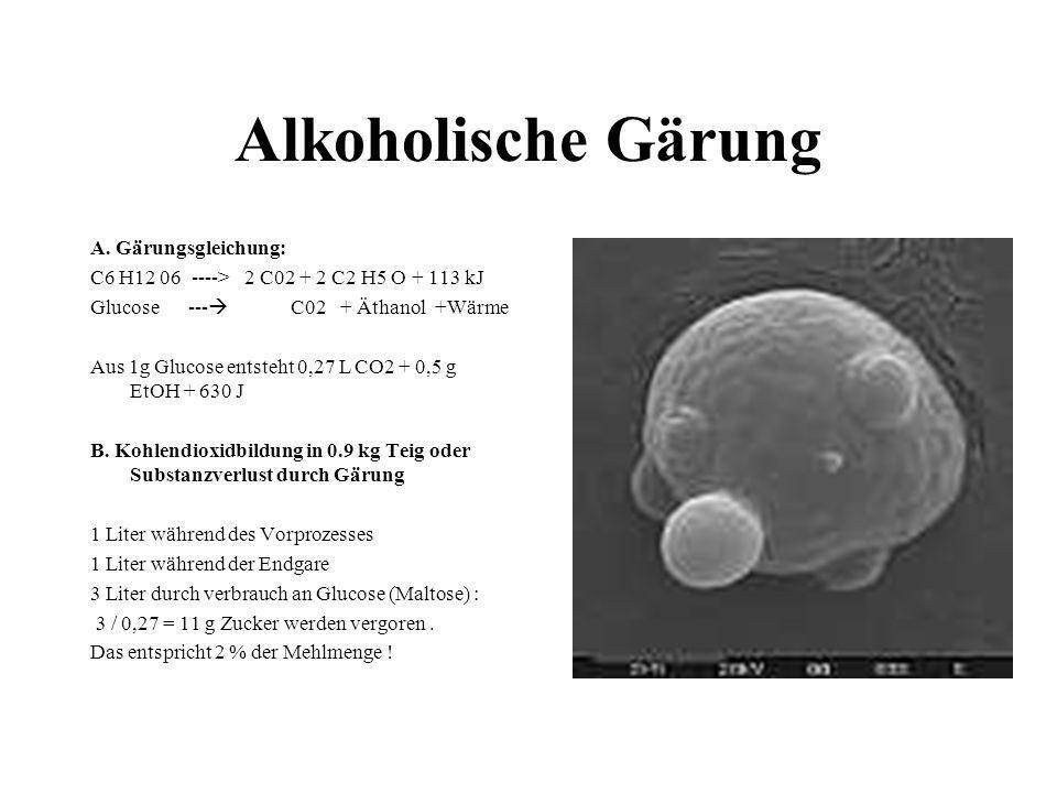 Alkoholische Gärung A. Gärungsgleichung: C6 H12 06 ----> 2 C02 + 2 C2 H5 O + 113 kJ Glucose --- C02 + Äthanol +Wärme Aus 1g Glucose entsteht 0,27 L CO