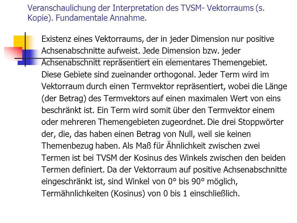 Veranschaulichung der Interpretation des TVSM- Vektorraums (s. Kopie). Fundamentale Annahme. Existenz eines Vektorraums, der in jeder Dimension nur po