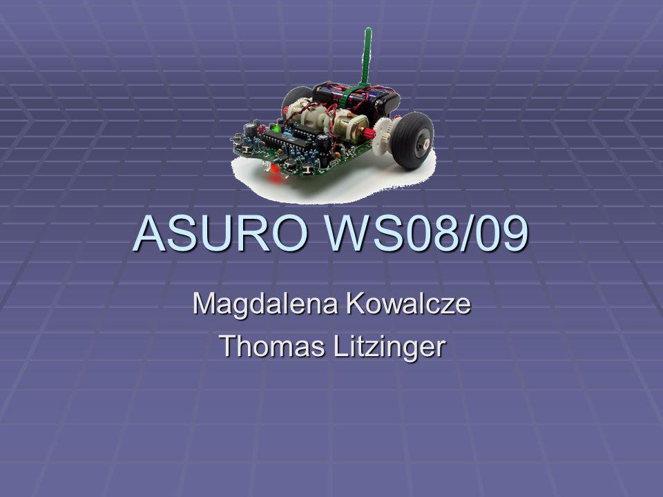 ASURO WS08/09 Magdalena Kowalcze Thomas Litzinger