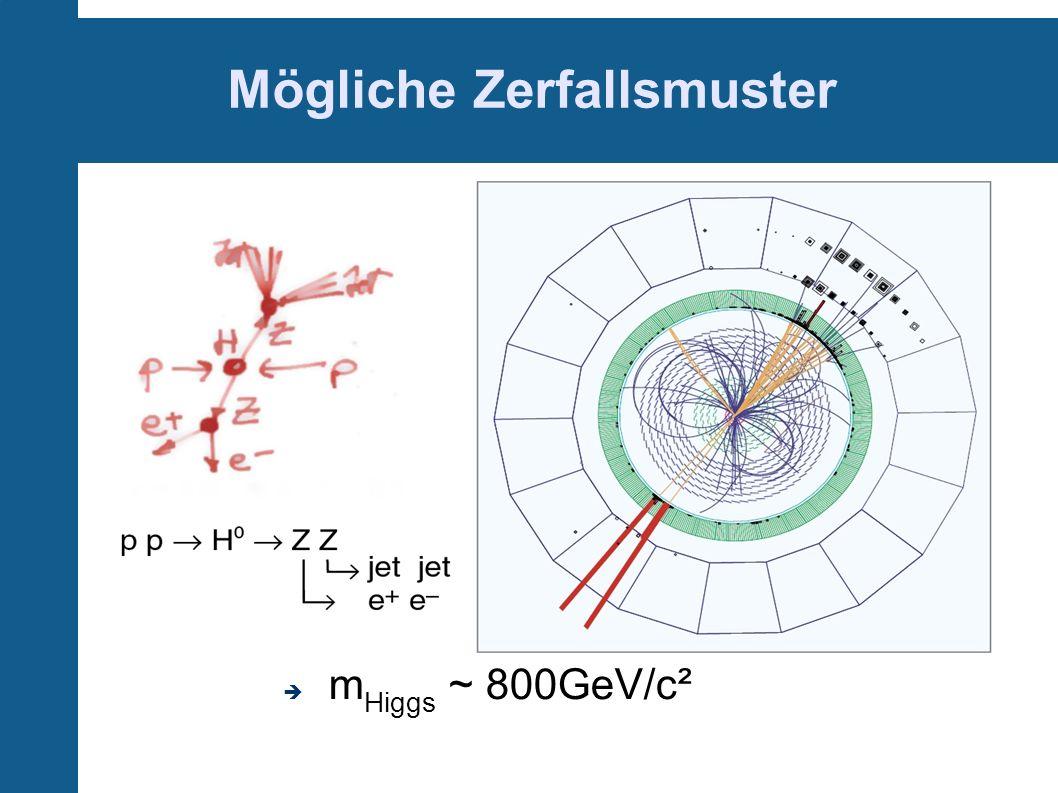 Mögliche Zerfallsmuster m Higgs ~ 800GeV/c²