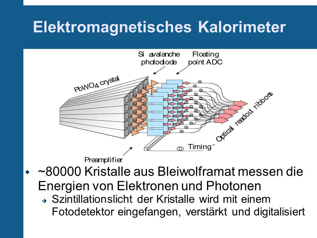 Elektromagnetisches Kalorimeter ~80000 Kristalle aus Bleiwolframat messen die Energien von Elektronen und Photonen Szintillationslicht der Kristalle w