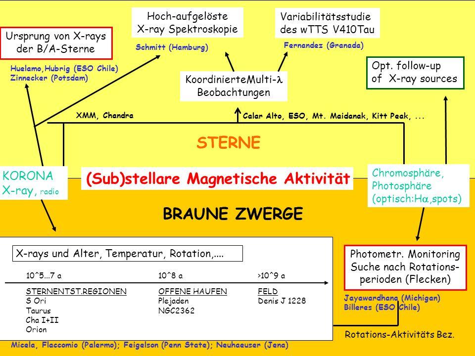 (Sub)stellare Magnetische Aktivität STERNE BRAUNE ZWERGE KoordinierteMulti- Beobachtungen Ursprung von X-rays der B/A-Sterne Huelamo,Hubrig (ESO Chile