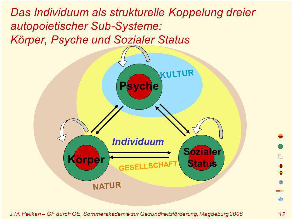 J.M. Pelikan – GF durch OE, Sommerakademie zur Gesundheitsförderung, Magdeburg 2006 12 Das Individuum als strukturelle Koppelung dreier autopoietische