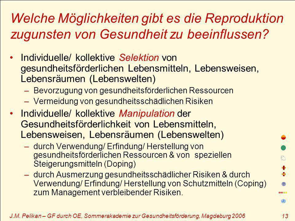 J.M. Pelikan – GF durch OE, Sommerakademie zur Gesundheitsförderung, Magdeburg 2006 13 Welche Möglichkeiten gibt es die Reproduktion zugunsten von Ges
