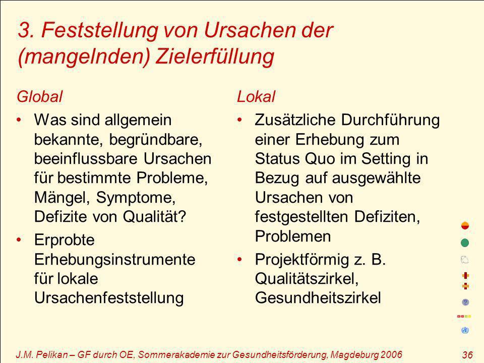 J.M. Pelikan – GF durch OE, Sommerakademie zur Gesundheitsförderung, Magdeburg 2006 36 3. Feststellung von Ursachen der (mangelnden) Zielerfüllung Glo