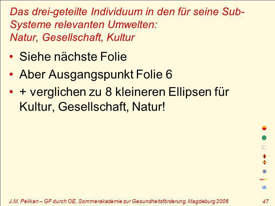 J.M. Pelikan – GF durch OE, Sommerakademie zur Gesundheitsförderung, Magdeburg 2006 47 Das drei-geteilte Individuum in den für seine Sub- Systeme rele