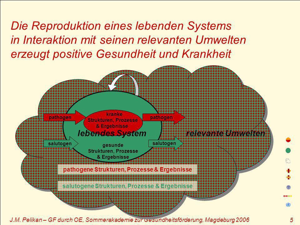 J.M. Pelikan – GF durch OE, Sommerakademie zur Gesundheitsförderung, Magdeburg 2006 5 relevante Umwelten pathogene Strukturen, Prozesse & Ergebnisse s