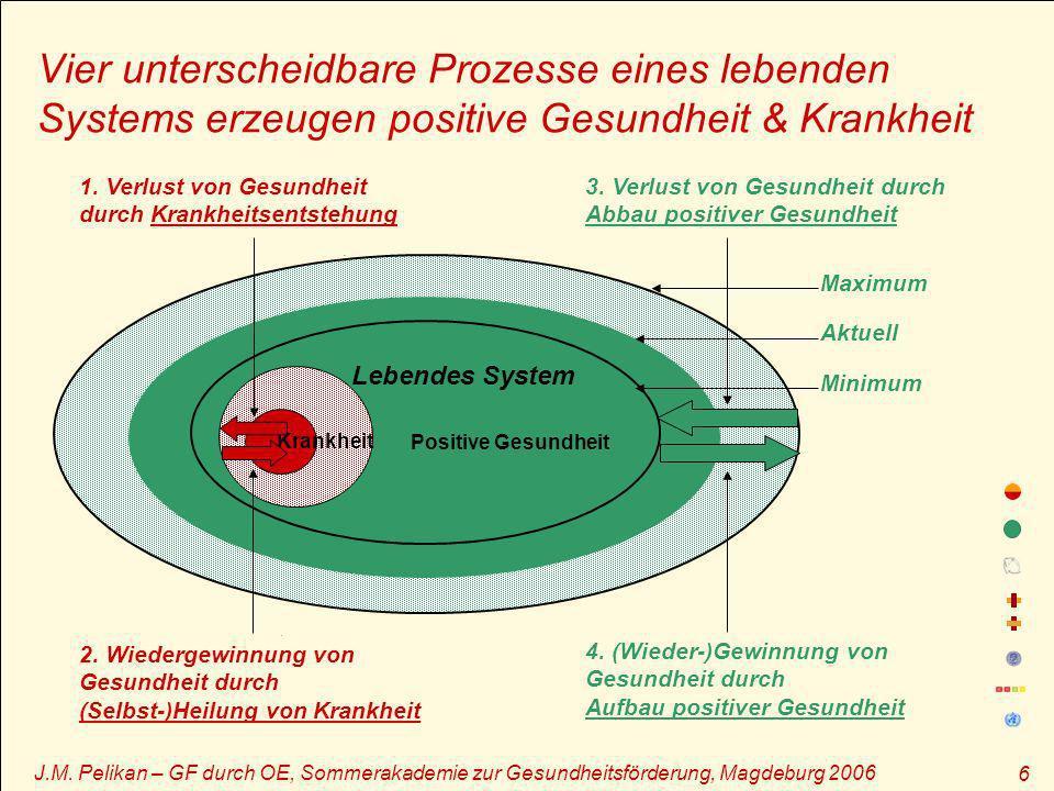 J.M. Pelikan – GF durch OE, Sommerakademie zur Gesundheitsförderung, Magdeburg 2006 6.. Vier unterscheidbare Prozesse eines lebenden Systems erzeugen