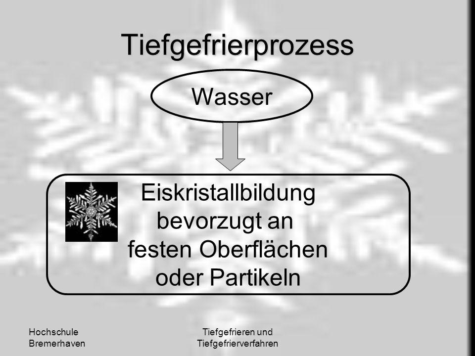 Hochschule Bremerhaven Tiefgefrieren und Tiefgefrierverfahren Tiefgefrierprozess Wasser Eiskristallbildung bevorzugt an festen Oberflächen oder Partik