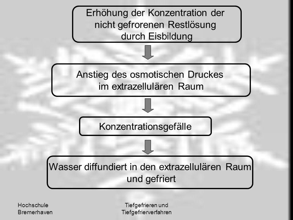 Hochschule Bremerhaven Tiefgefrieren und Tiefgefrierverfahren Erhöhung der Konzentration der nicht gefrorenen Restlösung durch Eisbildung Anstieg des
