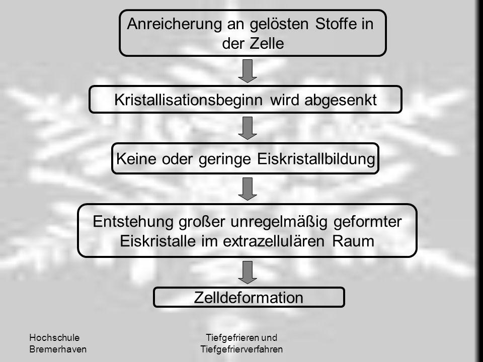 Hochschule Bremerhaven Tiefgefrieren und Tiefgefrierverfahren Anreicherung an gelösten Stoffe in der Zelle Kristallisationsbeginn wird abgesenkt Keine
