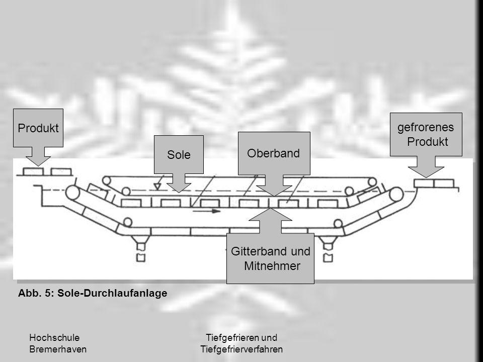 Hochschule Bremerhaven Tiefgefrieren und Tiefgefrierverfahren Produkt Sole Gitterband und Mitnehmer Oberband gefrorenes Produkt Abb. 5: Sole-Durchlauf