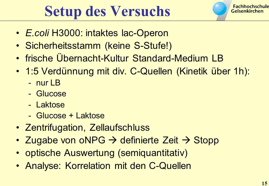15 Setup des Versuchs E.coli H3000: intaktes lac-Operon Sicherheitsstamm (keine S-Stufe!) frische Übernacht-Kultur Standard-Medium LB 1:5 Verdünnung m