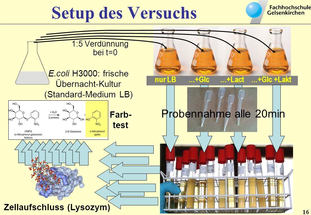 16 Setup des Versuchs 1:5 Verdünnung bei t=0 E.coli H3000: frische Übernacht-Kultur (Standard-Medium LB) nur LB …+Glc …+Lact …+Glc +Lakt Probennahme a