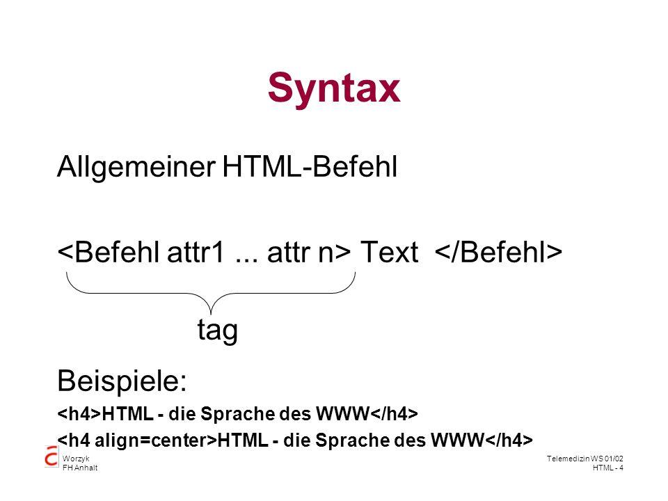 Worzyk FH Anhalt Telemedizin WS 01/02 HTML - 5