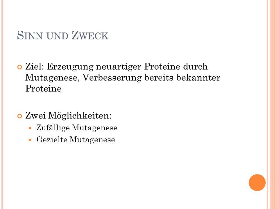 S INN UND Z WECK Ziel: Erzeugung neuartiger Proteine durch Mutagenese, Verbesserung bereits bekannter Proteine Zwei Möglichkeiten: Zufällige Mutagenese Gezielte Mutagenese
