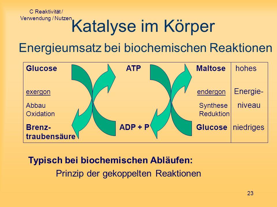 C Reaktivität / Verwendung / Nutzen 23 Katalyse im Körper Energieumsatz bei biochemischen Reaktionen Glucose ATP Maltose hohes exergon endergon Energi