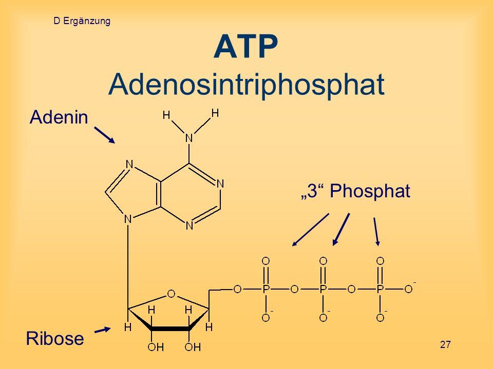 D Ergänzung 27 ATP Adenosintriphosphat Adenin Ribose 3 Phosphat