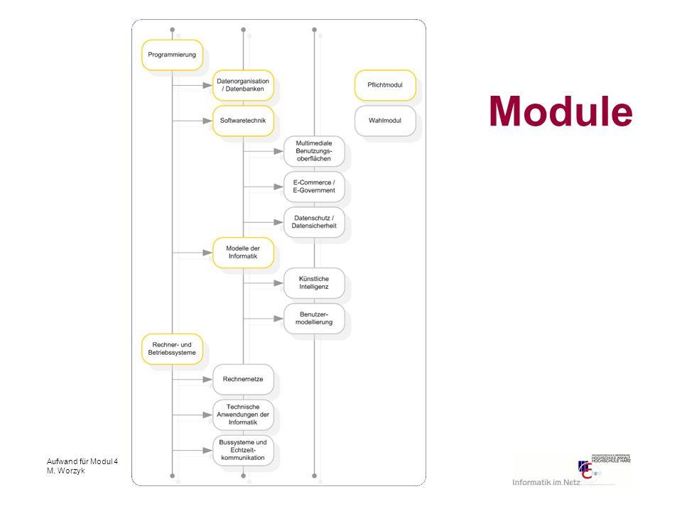 Aufwand für Modul 4 M. Worzyk Module