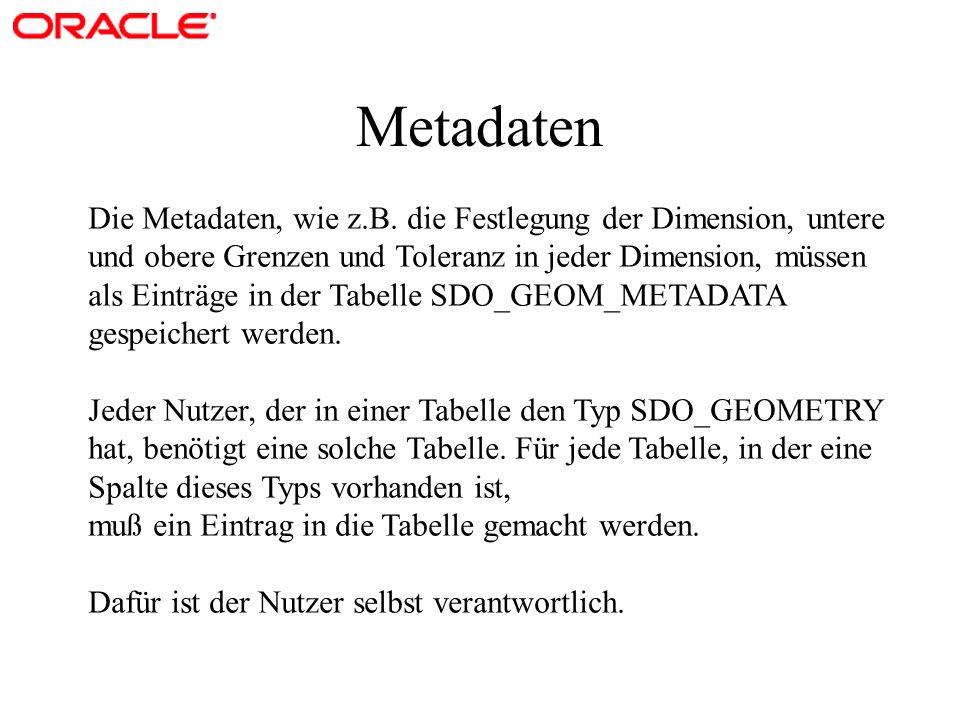 Metadaten Die Metadaten, wie z.B. die Festlegung der Dimension, untere und obere Grenzen und Toleranz in jeder Dimension, müssen als Einträge in der T
