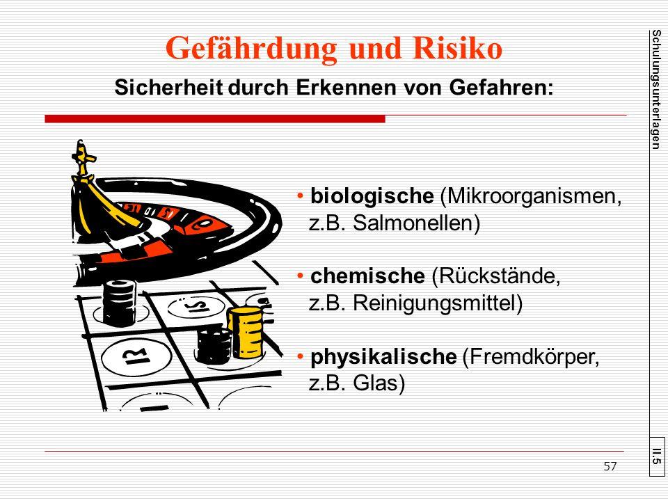 Gefährdung und Risiko Sicherheit durch Erkennen von Gefahren: biologische (Mikroorganismen, z.B. Salmonellen) chemische (Rückstände, z.B. Reinigungsmi
