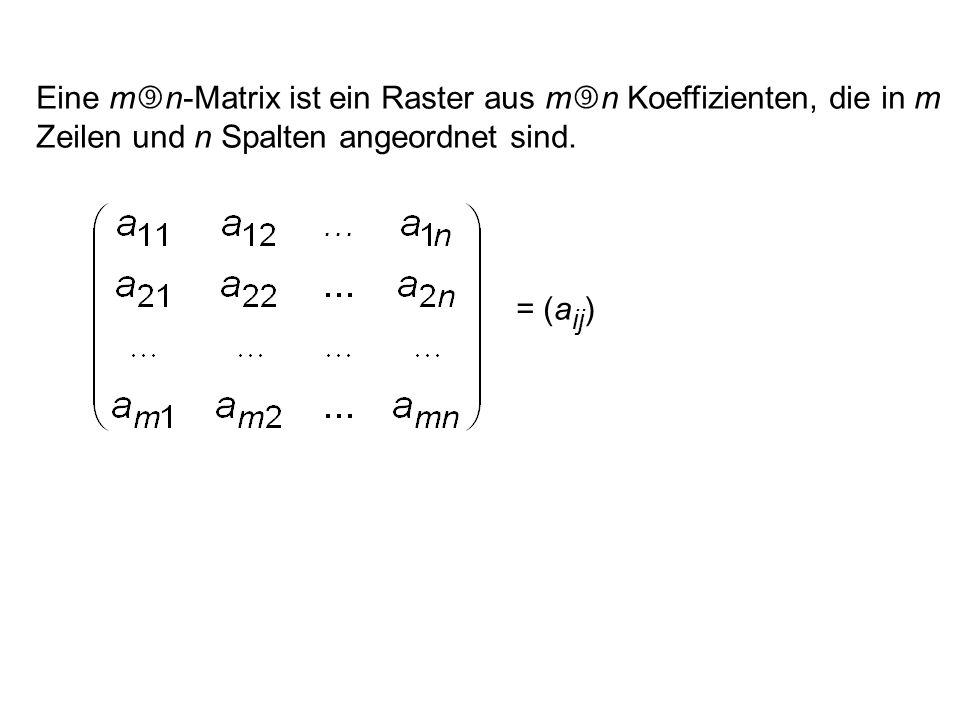 Eine m n-Matrix ist ein Raster aus m n Koeffizienten, die in m Zeilen und n Spalten angeordnet sind. = (a ij ) 1 i m, 1 j n