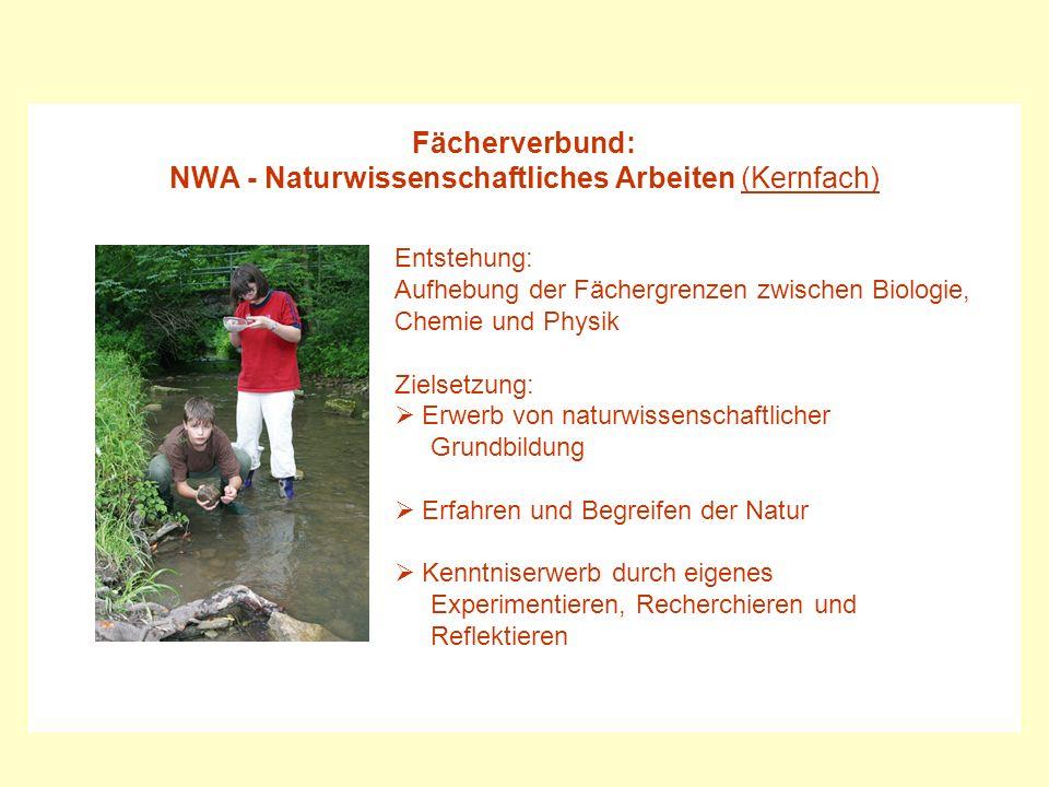 Fächerverbund: NWA - Naturwissenschaftliches Arbeiten (Kernfach) Entstehung: Aufhebung der Fächergrenzen zwischen Biologie, Chemie und Physik Zielsetz