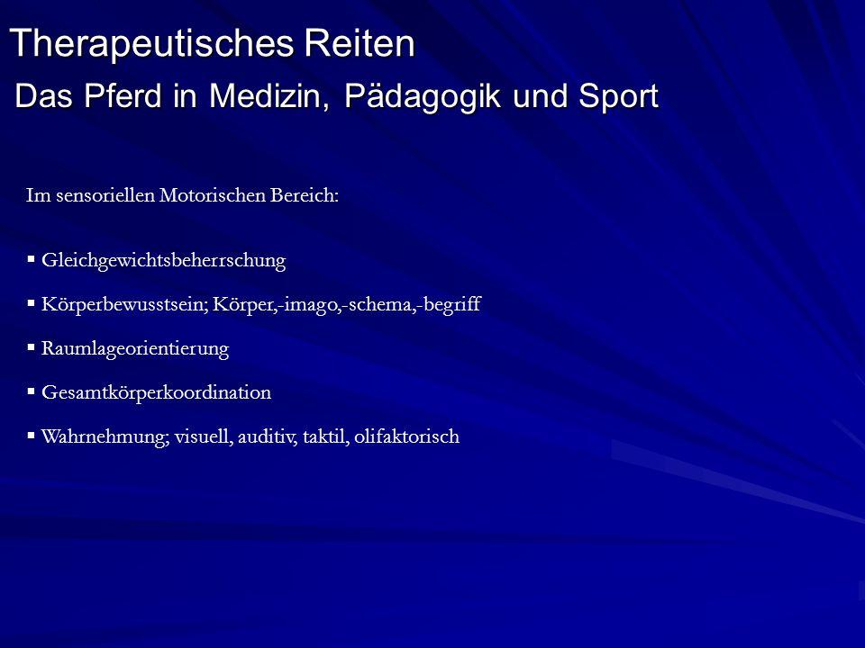 Therapeutisches Reiten Das Pferd in Medizin, Pädagogik und Sport Im sensoriellen Motorischen Bereich: Gleichgewichtsbeherrschung Körperbewusstsein; Kö