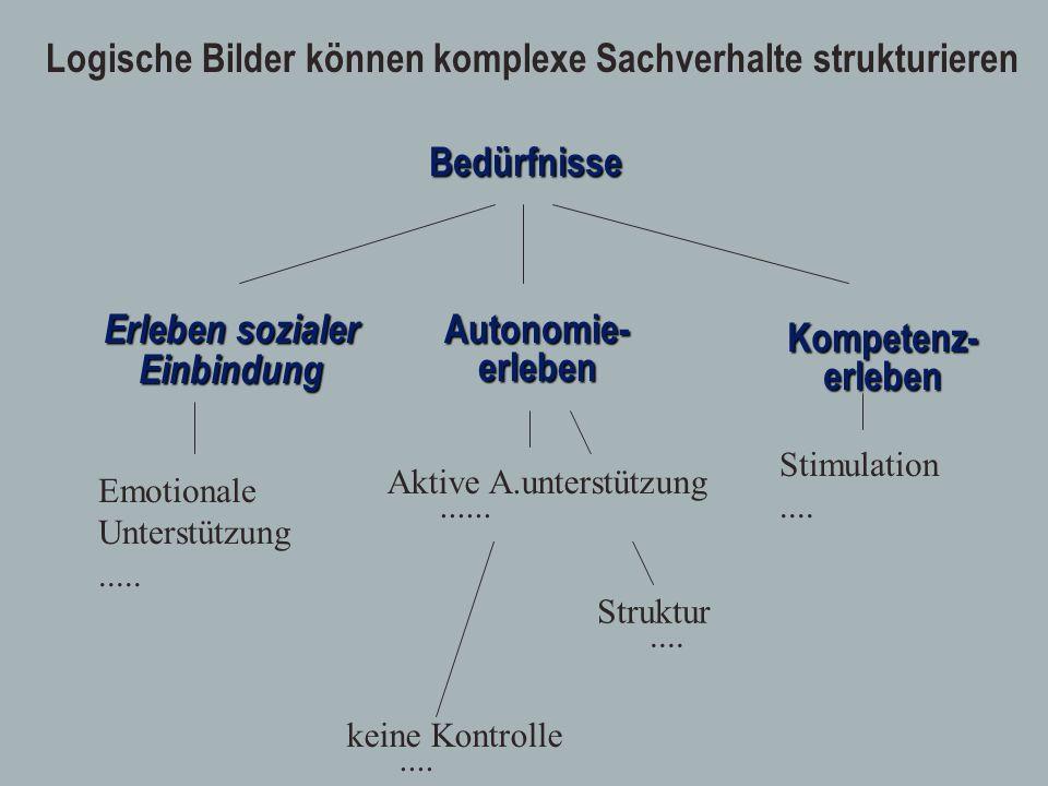 Erleben sozialer EinbindungBedürfnisseAutonomie-erleben Kompetenz-erleben keine Kontrolle.... Struktur.... Aktive A.unterstützung...... Logische Bilde