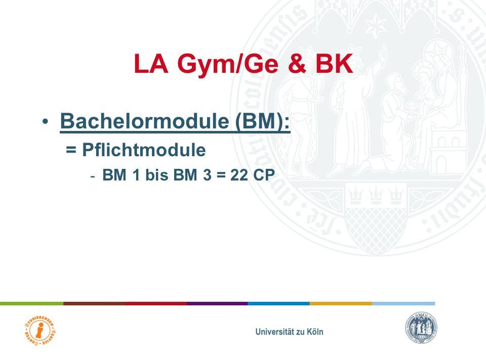 LA BK = Lehramt für Berufskolleg mit einem sonderpädagogischen Förderschwerpunkt mögliche Förderschwerpunkte: –Fsp Lernen –Fsp soziale und emotionale