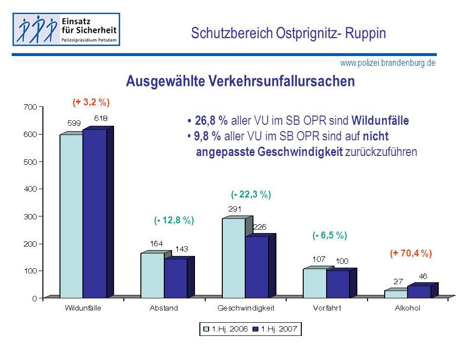 www.polizei.brandenburg.de Schutzbereich Ostprignitz- Ruppin Ausgewählte Verkehrsunfallursachen (- 12,8 %) (+ 3,2 %) (- 22,3 %) (+ 70,4 %) 26,8 % alle