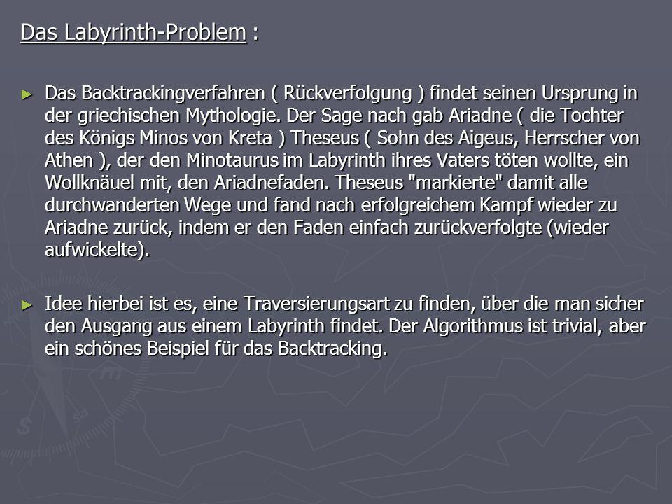 Das Labyrinth-Problem :