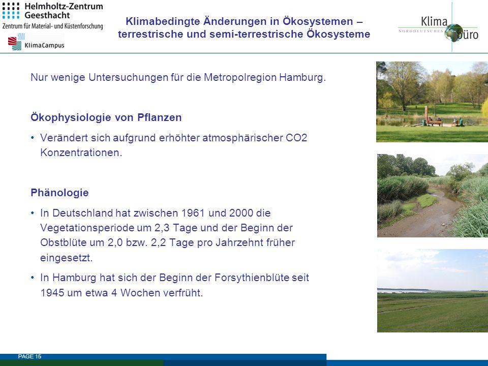 PAGE 15 Klimabedingte Änderungen in Ökosystemen – terrestrische und semi-terrestrische Ökosysteme Nur wenige Untersuchungen für die Metropolregion Ham