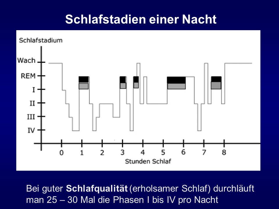 Schlafstadien einer Nacht Bei guter Schlafqualität (erholsamer Schlaf) durchläuft man 25 – 30 Mal die Phasen I bis IV pro Nacht