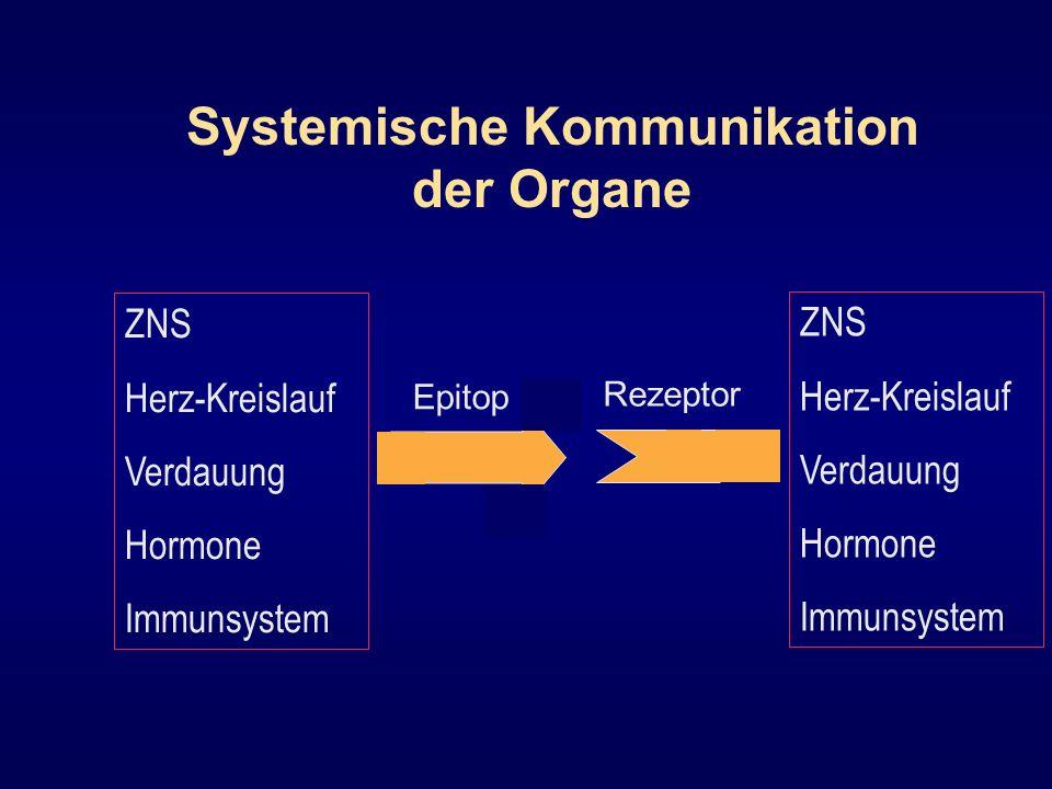 Epitop Rezeptor ZNS Herz-Kreislauf Verdauung Hormone Immunsystem Systemische Kommunikation der Organe ZNS Herz-Kreislauf Verdauung Hormone Immunsystem