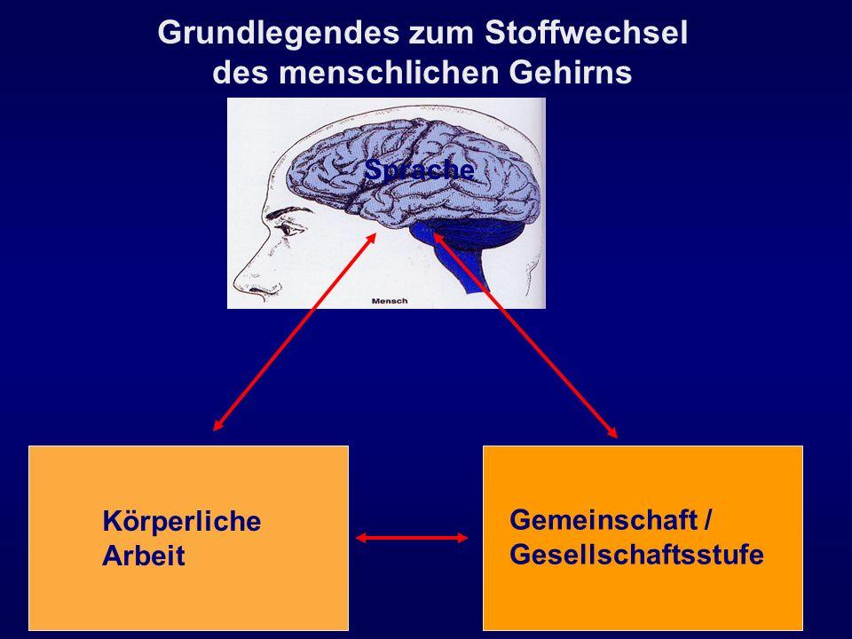 Körperliche Arbeit Gemeinschaft / Gesellschaftsstufe Grundlegendes zum Stoffwechsel des menschlichen Gehirns Sprache