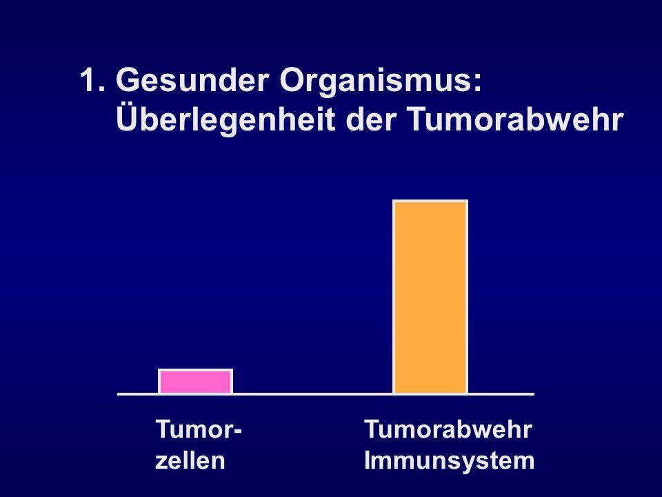 1. Gesunder Organismus: Überlegenheit der Tumorabwehr Tumor- zellen Tumorabwehr Immunsystem