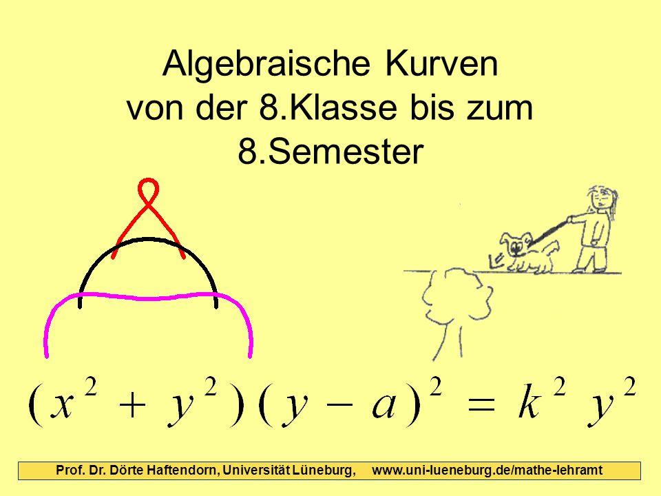 Algebraische Kurven von der 8.Klasse bis zum 8.Semester Prof. Dr. Dörte Haftendorn, Universität Lüneburg, www.uni-lueneburg.de/mathe-lehramt
