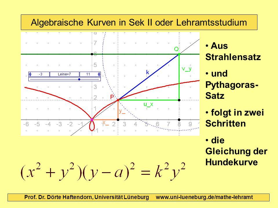 Algebraische Kurven in Sek II oder Lehramtsstudium Prof. Dr. Dörte Haftendorn, Universität Lüneburg www.uni-lueneburg.de/mathe-lehramt Aus Strahlensat