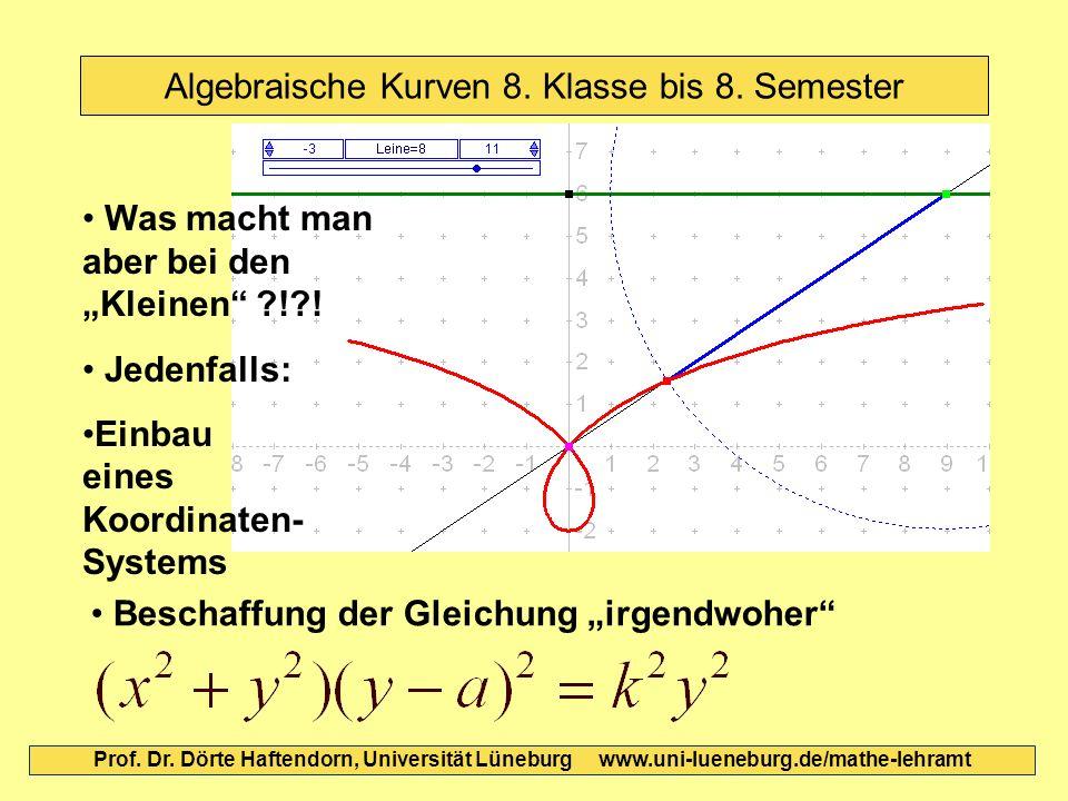 Algebraische Kurven 8. Klasse bis 8. Semester Prof. Dr. Dörte Haftendorn, Universität Lüneburg www.uni-lueneburg.de/mathe-lehramt Jedenfalls: Einbau e